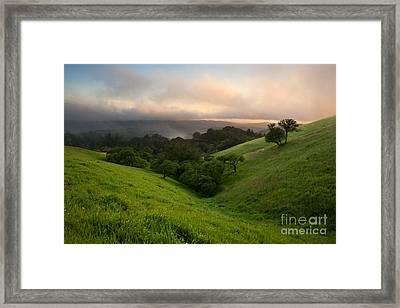 Valley Sentries In Spring Framed Print by Matt Tilghman