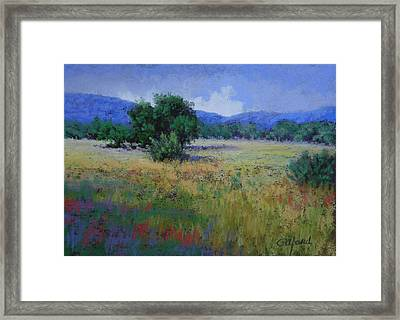 Valley View Framed Print by Paula Ann Ford