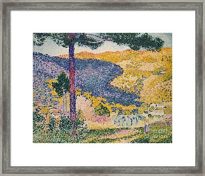 Valley With Fir  Shade On The Mountain, 1909  Framed Print by Henri Edmond Cross