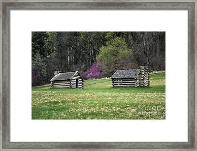 Vally Forge Park Framed Print