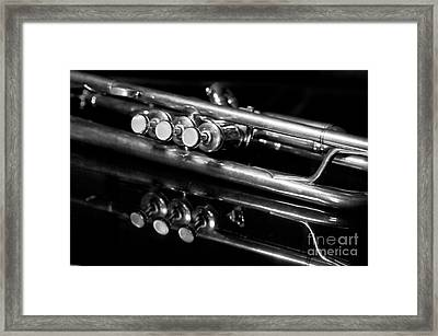 Valves Framed Print by Dan Holm