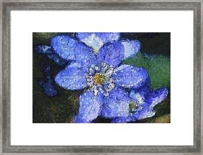 Van Gogh Blue Flower Framed Print by Mario Carini
