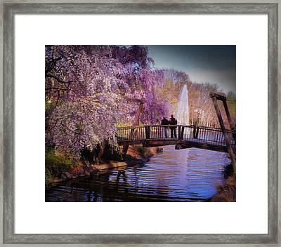 Van Gogh Bridge - Reston, Virginia Framed Print