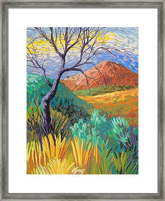 Van Gogh In Thefranklins Framed Print by Candy Mayer
