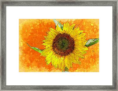 Van Gogh's Sunflower In Orange Framed Print