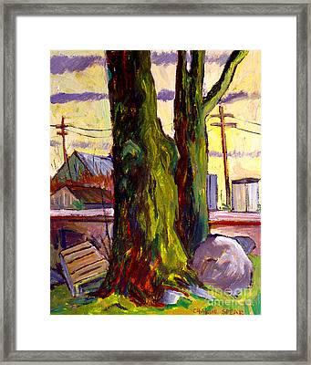 Van Goghs Tree Plein Air Framed Print by Charlie Spear