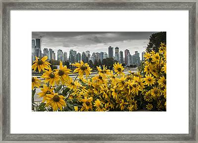 Vancouver Framed Print by Robin Williams