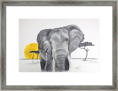 Vanishing Elephant Framed Print