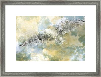 Vanishing Seagull Framed Print by Melanie Viola