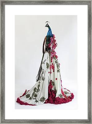 Vanity Framed Print by Afke Golsteijn