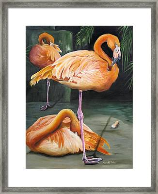 Framed Print featuring the painting Vanity by Phyllis Beiser