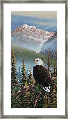Vantage Point Framed Print
