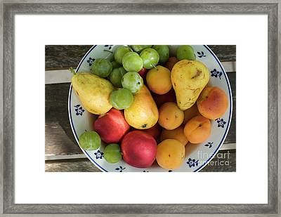 Variety Of Fresh Summer Fruit On A Plate Framed Print by Sami Sarkis