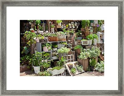 Framed Print featuring the photograph Various Green by Aiolos Greek Collections