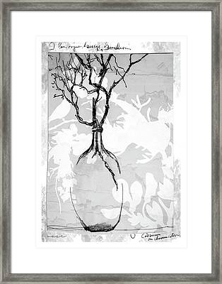 Vase Framed Print by Barbara Andolsek