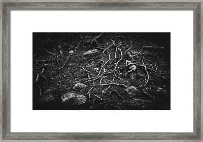 Vascular Framed Print by Matti Ollikainen