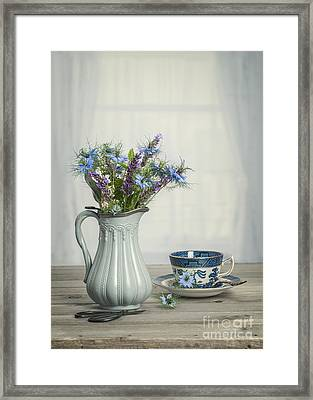 Vase Of Cornflowers Framed Print by Amanda Elwell