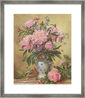 Vase Of Peonies And Canterbury Bells Framed Print by Albert Williams