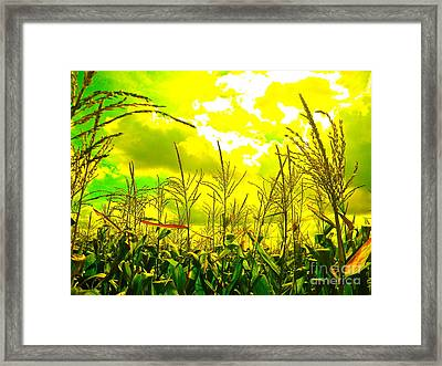 Vegetable Soul Framed Print by Chuck Taylor