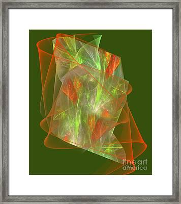 Veiled Option  Framed Print