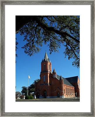 Veiled With Oak Framed Print by Seaux-N-Seau Soileau
