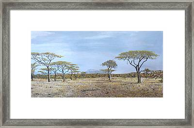 Veldt Framed Print by Dan Bozich