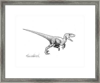 Velociraptor - Dinosaur Black And White Ink Drawing Framed Print