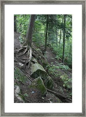 Velvet Rock Framed Print by Alan Rutherford
