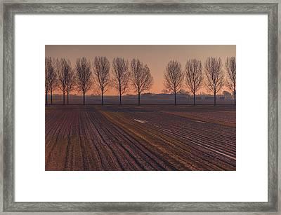 Velvet Sunset On Zen Road Framed Print by Jenny Rainbow