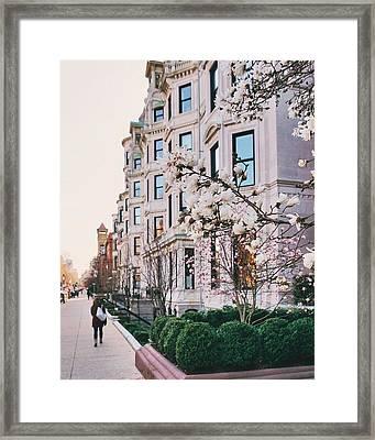 Vendome With Magnolias Framed Print