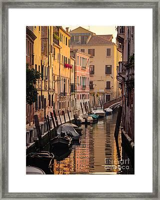 Venetian Yellow  Framed Print by Amy Sorvillo