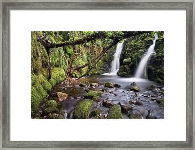 Vennford Waterfall On Dartmoor In Spring Framed Print by Pete Hemington