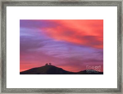 Ventura Ca Two Trees At Sunset Framed Print