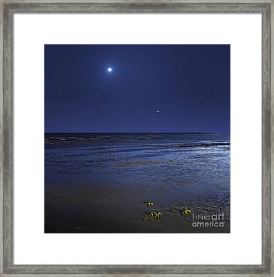 Venus Shines Brightly Framed Print by Luis Argerich