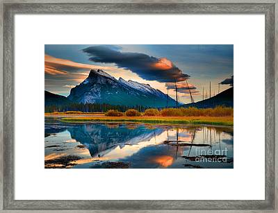 Vermillion Beauty Framed Print by Tara Turner
