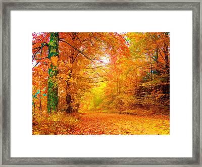 Vermont Autumn Framed Print by Vicky Brago-Mitchell