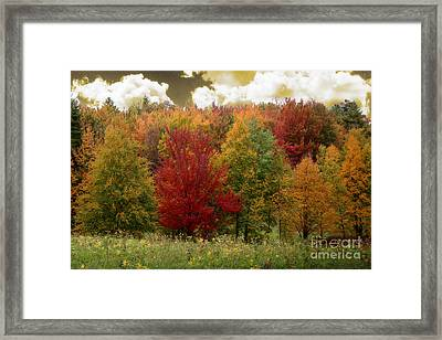 Vermont Drive Framed Print by Mindy Sommers