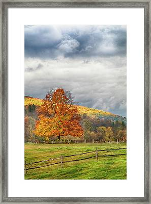 Framed Print featuring the photograph Vermont Fall Colors After The Rain by Jeff Folger