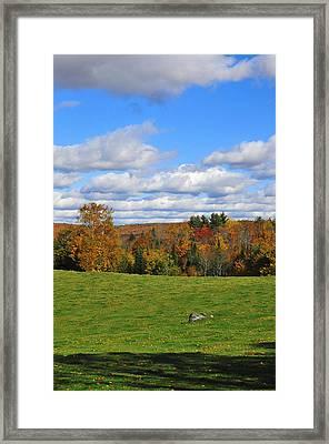 Vermont Field Framed Print by Mandy Wiltse