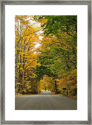 Vermont Foliage Framed Print by Mandy Wiltse