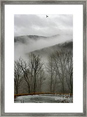 Vermont Mist Framed Print by Paula Deutz