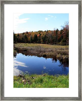Vermont Reflections 1 Framed Print by George Jones