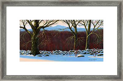 Vermont Stone Wall Framed Print by Frank Wilson