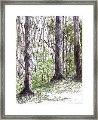 Framed Print featuring the painting Vermont Woods by Laurie Rohner