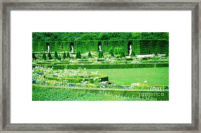 Versailles Pathways Framed Print