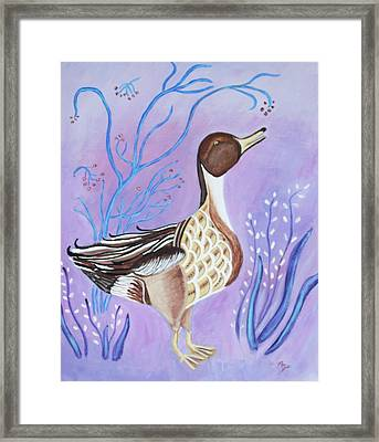 Version Of A Pintail Framed Print