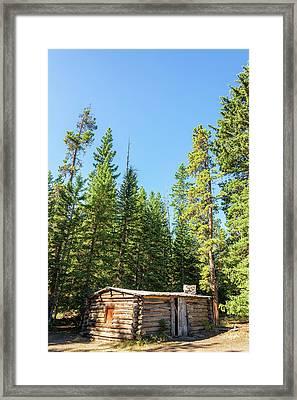 Vertical Abandoned Cabin Framed Print