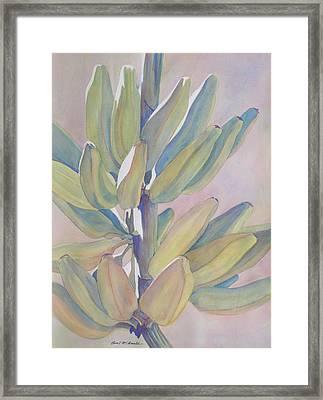 Vertical Banana Bunch Framed Print by Carol McDonald