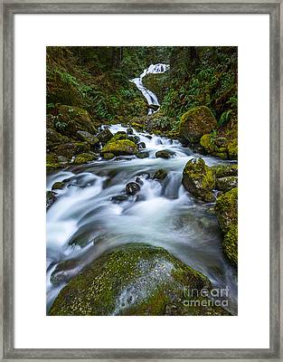 Vertical Bunch Creek Falls Framed Print