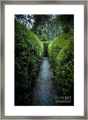 Vertical Outdoor Photograph Of A Garden Labyrinth Framed Print by Jorgo Photography - Wall Art Gallery